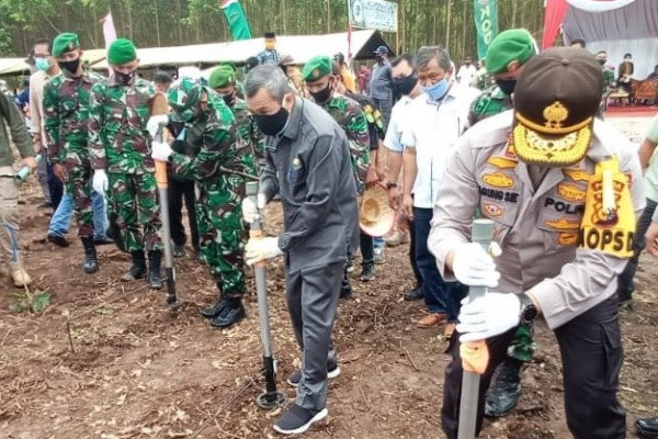 Gubri Tanam Perdana Jagung Kelompok Tani Hutan Sendang Berkah Aryastya di Kampar