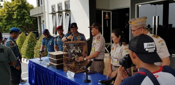 Tim F1QR Lanal Batam Gagalkan Ratusan Penyelundupan Satwa