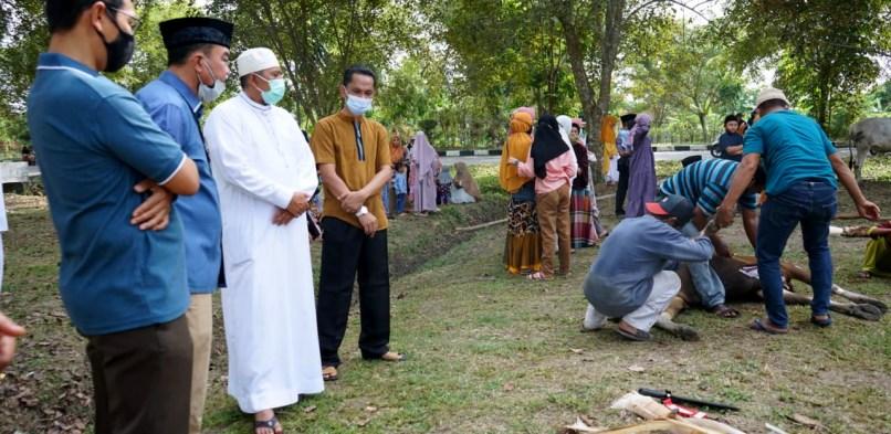Bupati Alfedri Tinjau Pelaksanaan Ibadah Pemotongan Hewan Qurban