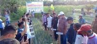 Ketua DPRD Kuansing Kunjungi BUMDes Telaga Bening Desa Pulau Komang