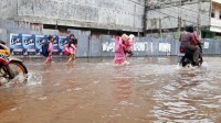 BPBD Riau : Saat Ini 5 Daerah di Riau Terdampak Banjir